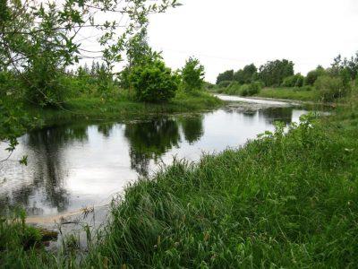 Infopäev Räpina poldri hoiualal poollooduslike koosluste hooldamise võimaluste kohta @ Keskkonnaameti Räpina kontori saalis | Räpina | Põlva maakond | Eesti