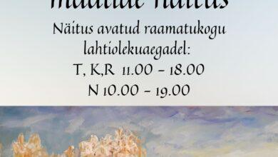 Photo of Kaisi Vinogradovi maalide näitus Leevi rahvamajas